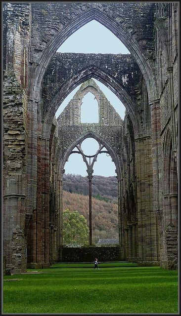 Tintern Abbey was dissolved by Henry VIII.  The ruins are 881 years old.  #travel