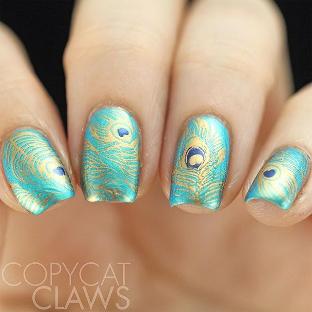Beautiful Peacock nail art using  @uberchicbeauty Fabulous Feathers stamping over @parrot_polish Blue Macaw.   This plate has lots of peacock images and tons of other feathers.