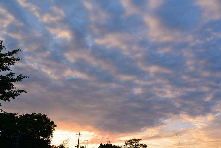 西の空~♪夕焼け~~♪ #夕焼け #イマソラ