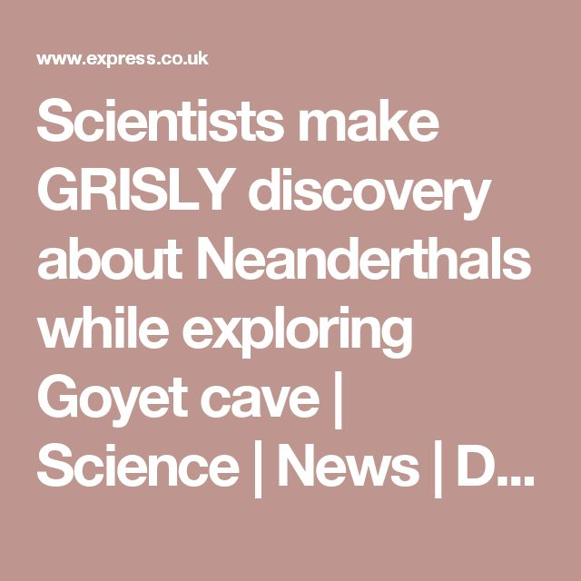 Scientists make GRISLY discovery about Neanderthals while exploring Goyet cave | Science | News | Daily Express