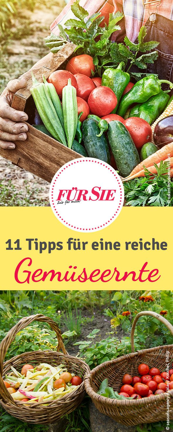 667 best images about garten on pinterest, Gartengerate ideen
