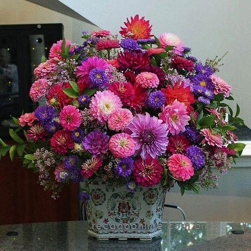 photo lindas flores rosadas_zpsegdwyoi7.gif