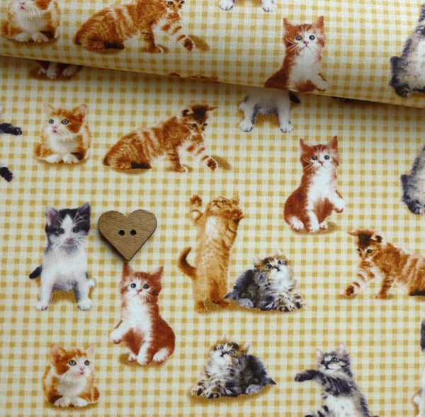 Cute and Kitsch – Gingham Kitty | Fabric Rehab