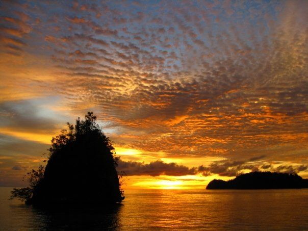Black Marlin Dive Resort, Kadidiri, Togian Islands - Sulawesi ♥
