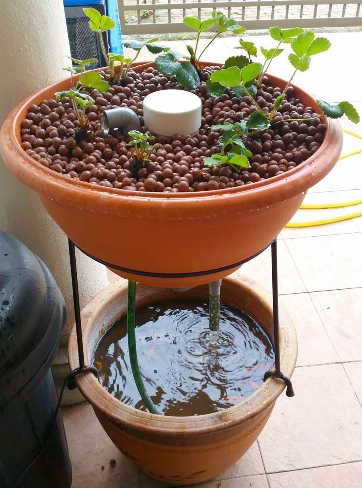 Green Wall Style Aquaponics  Source    Ikea Shelf Aquaponics  Source    Classic IBC Tote Aquaponics  Source  Here's a short DIY article on building your own IBC Tote aquaponics like  this..    Classic Wooden Aquaponics with NFT  Source    Converted Gutters  Source    Converted Water Tank Aquaponics  Source    Large Indoor/Outdoor Aquaponics  Source    Planter Style Aquaponics  Source    Wall Mounted Aquaponics  Source    Bathtub Aquaponics  Source    Fancy Acrylic Style  Source   Featured…