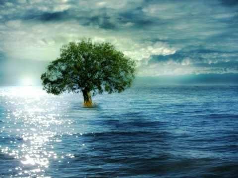 Η βροχή - Οπισθοδρομική Κομπανία - YouTube