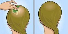 Dein Haar wird wachsen wie verrückt und du wirst ein Sehvermögen wie ein Adler… Justina Borchert