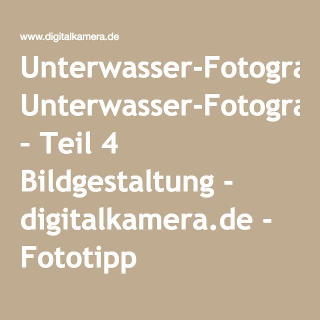 Unterwasser-Fotografie – Teil 4 Bildgestaltung - digitalkamera.de - Fototipp