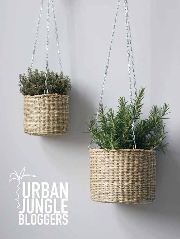 Urban Jungle Bloggers | Hanging Planters | These Four Walls