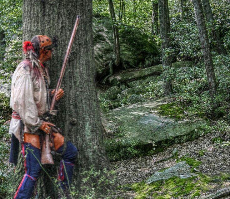 Native Woodland Plants: 300 Best Eastern Woodlands Warriors