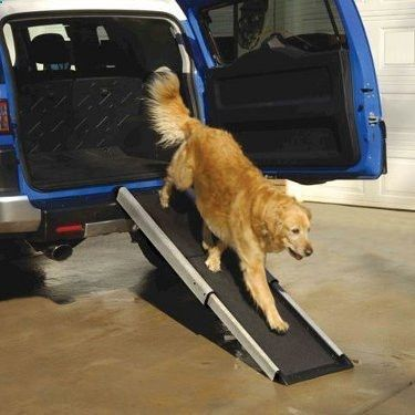 Smart Dog Ramp. Get this and more of dog ramp and dog stairs ideas at www.petpossibilities.com/collections/dog-ramps-and-stairs.