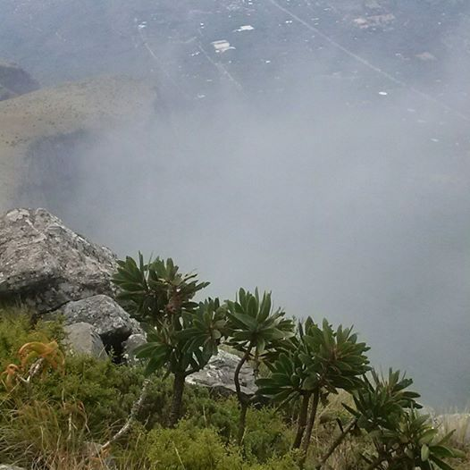 Mariepskop View South Africa