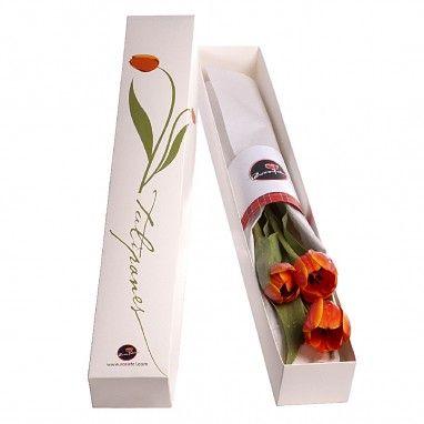 ¿Buscar enviar tulipanes a domicilio? Compra aquí nuestros Tulipanes en Caja, tenemos delivery a todo Chile.