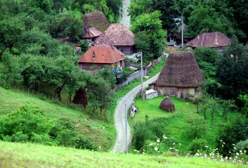 Firijba, satul mic, ascuns de pădure, vechi de dinaintea lumii, cum i se mai spune. Un sat care  a apărut tocmai pentru a fi conservat românismul, un sat ce este ascuns de pădurea care desparte Popeştiul de Frânceşti şi unde greu se ajungea până în urmă cu câţiva ani. Doar pe potecă de cal.