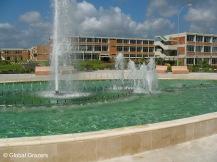 Université Félix Houphouet-Boigny, Cocody, Abidjan, Côte d'Ivoire (Ivory Coast) | Global Grazers