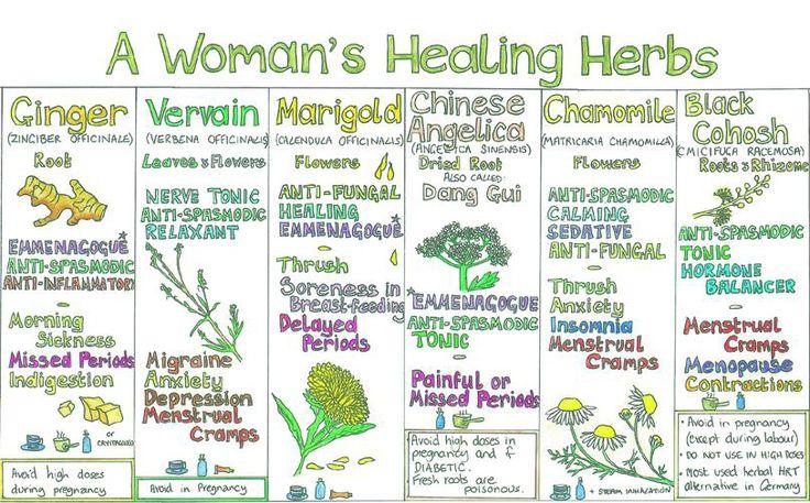 "Please share this fantastic chart of ""A Woman's Healing Herbs""►►http://herbs-info.com/blog/a-womans-healing-herbs-wall-chart-from-liz-cook/?i=p"