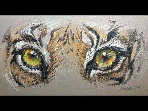 Hoe teken je Tijger Ogen / dieren tekenen / #42 - YouTube