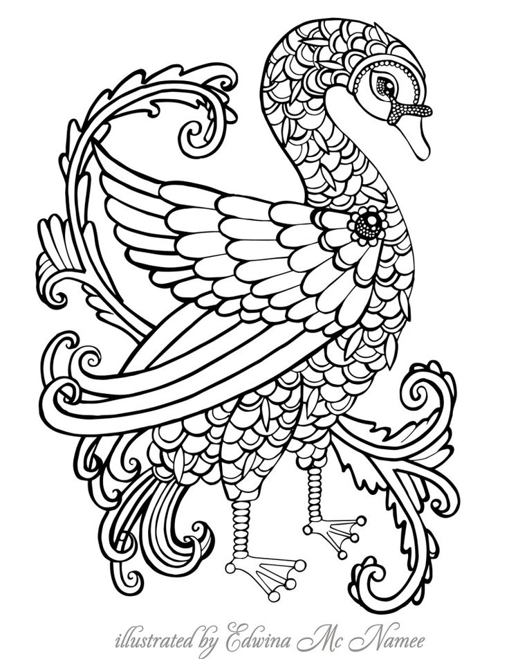 smallswan   free sample   Join fb grown-up coloring group ...