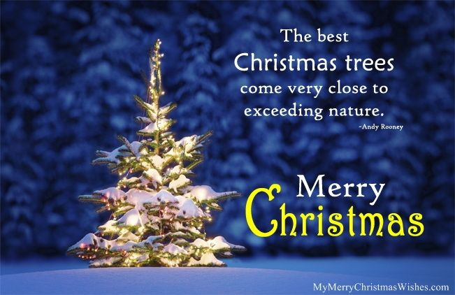 Beautiful Christmas Tree Quotes 2018 Sayings Images Christmas2018 Xmas Xmastreequotes Christmastreequ Christmas Tree Quotes Tree Quotes Christmas Tree Poem