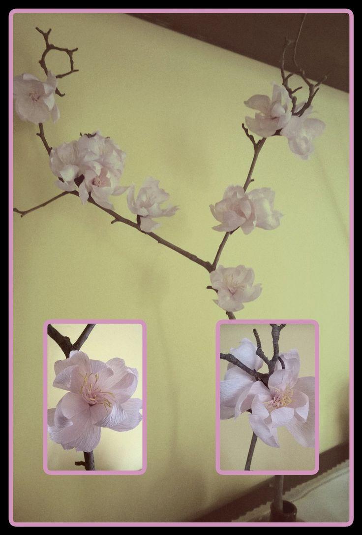 Fiori di pesco, fiori di carta crespa. #crepe paper flowers#