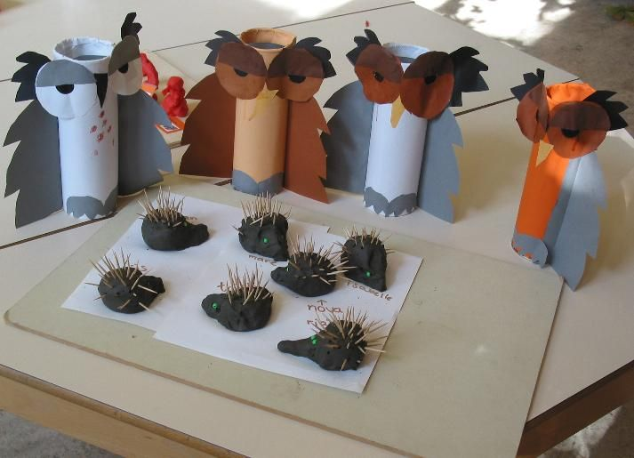 toilet paper roll owls with clay and toothpick hedgehogs