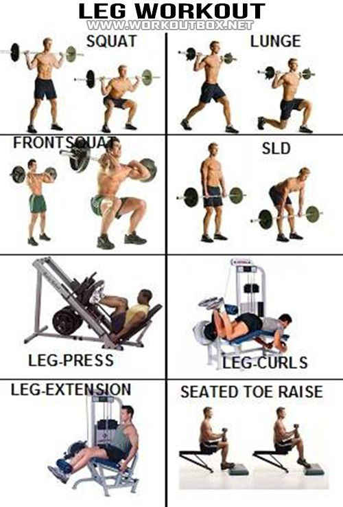 Leg Workout - Healthy Fitness Exercises Calves Legs Butt Sixpack - FITNESS HASHTAG