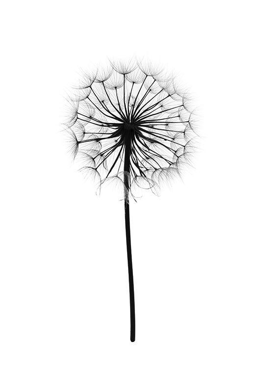 Schöner Pflanzenprint in Schwarz und Weiß. – Rebecca Cleave