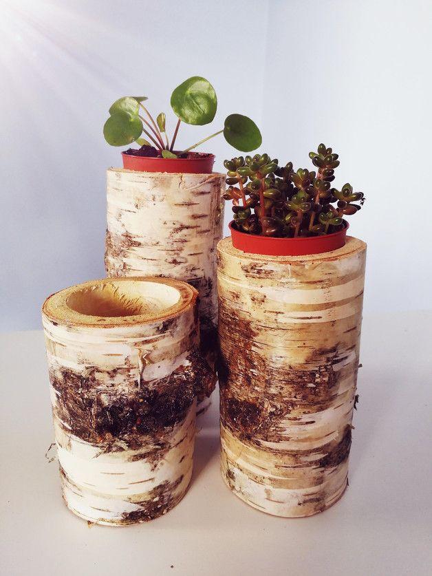 Zestaw 3 doniczek drewnianych brzozowych 100% naturalne, wysokości:10cm; 12,5cm i 15cm, średnica ok.6,5cm, otwór 5cm. Idealne na sukulenty :)
