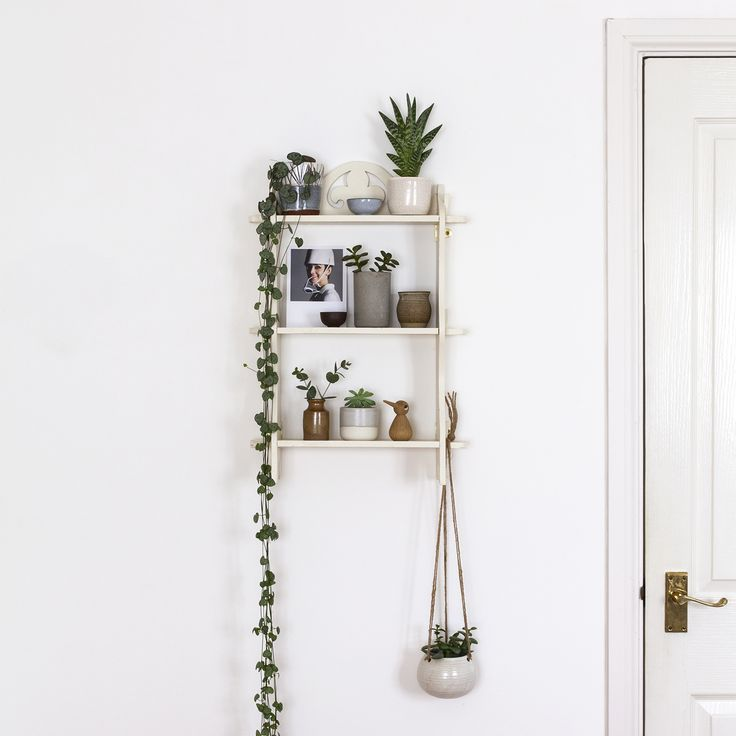3 Simple Ways to Style Your Houseplants