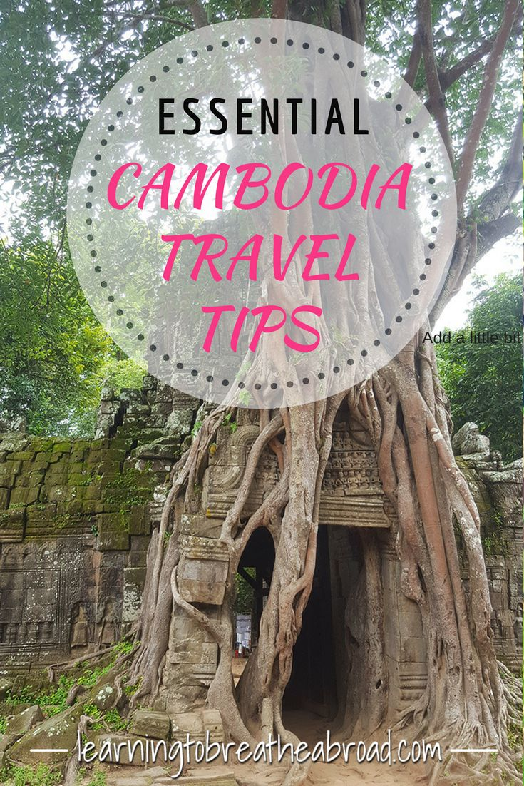 The essential list of travel tips for anyone planning a trip to Cambodia. Tips on transport, food & drink, visas, ATM's and more. | Cambodia Travel Tips | Cambodia travel | Travel tips for Cambodia