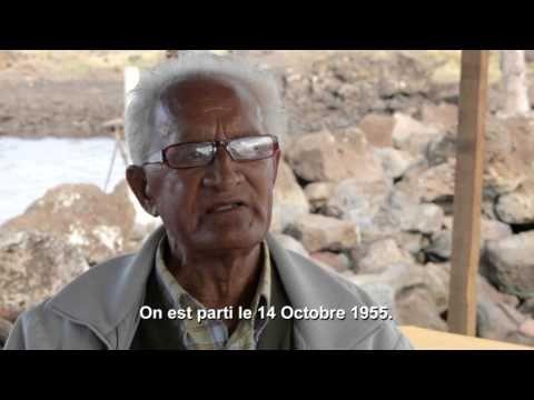 RAPANUI - L'histoire cachée de l'île de Pâques