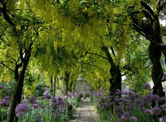 Barnsley House Garden Charleston GardensHouse GardensBarnsley GardensWalk InMost Beautiful GardensEnglish