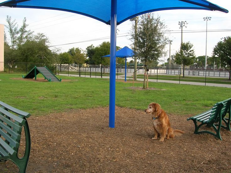 Dog Friendly Parks Palm Beach Gardens