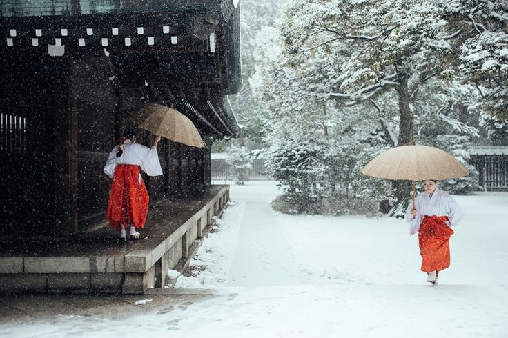 8 février 2014. Au cœur du sanctuaire Meiji-Jingu, dans le centre de Tokyo, deux prêtresses Shinto essayent de progresser dans la neige, malgré l'impressionnante tempête de neige qui est entrain de frapper l'archipel nippon – du jamais vu en 45 ans ! Par Nicolas Datiche
