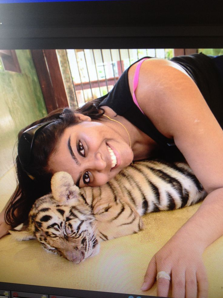 Playing with the baby tigers in phuket's tiger kingdom! Worth the money!