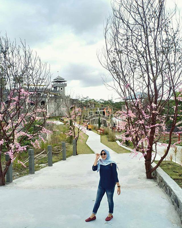 Taman Anggrek Jalan Kaliurang