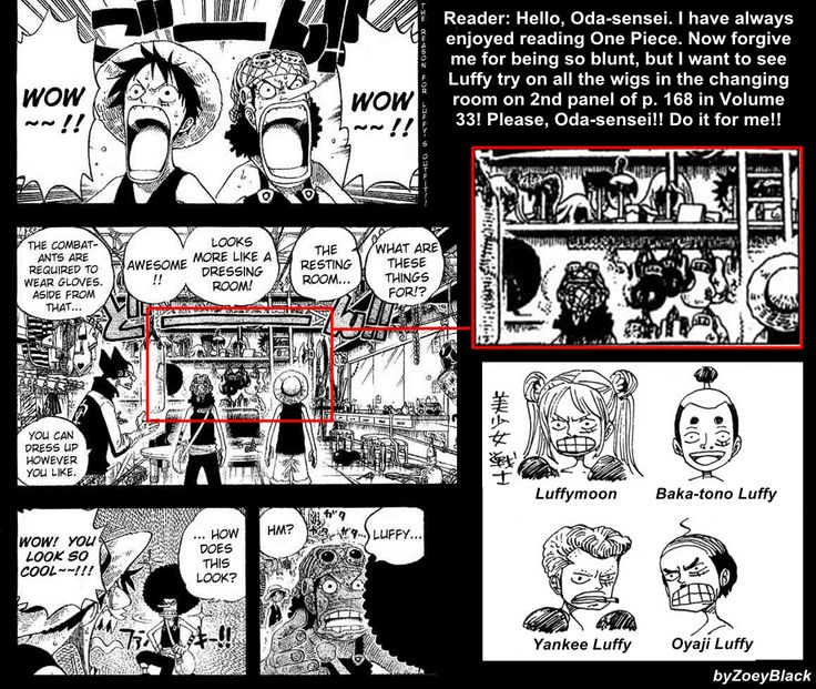 Chatter For Theories On One Piece