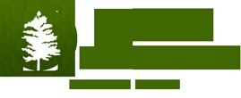 Logo design for a Spokane tree removal service