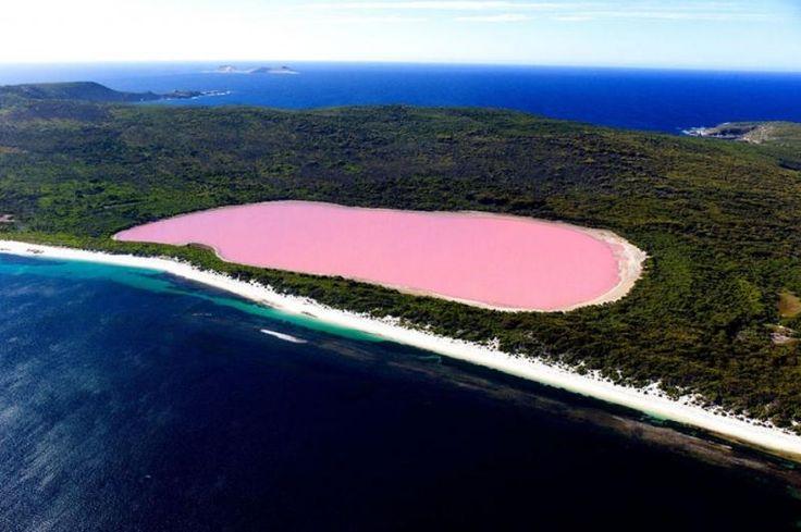 фото розовое озеро Хиллер: 18 тыс изображений найдено в Яндекс.Картинках