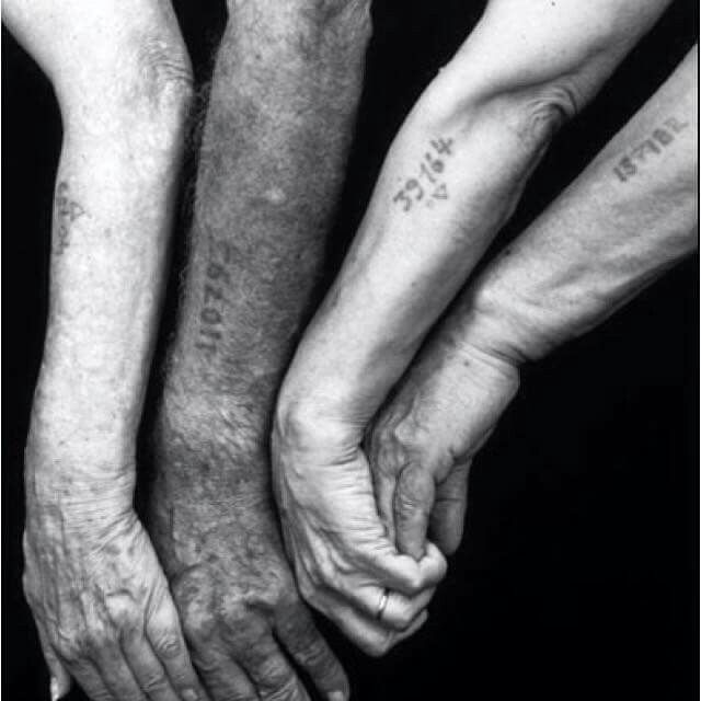This is maybe one of the most powerful pictures. The numbers on the arms are from prisoners of Nazi concentration camps. The numbers replaced their names while at the camps and they were tattooed on so that they could be easily tracked by the Germans. This is why we study history. So this never happens again.