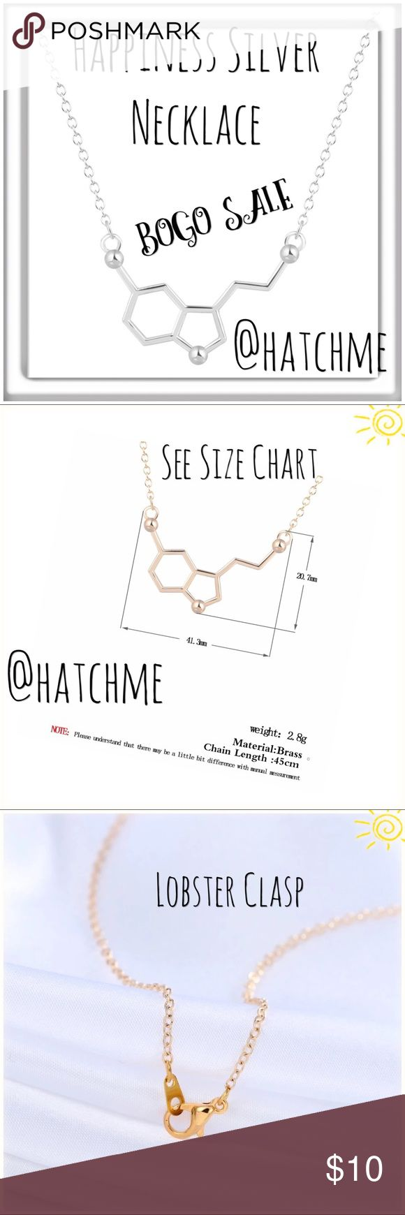 BOGO SALE Silver Chemistry Happiness Necklace. BOGO SALE Silver Chemistry Happiness Necklace Jewelry Necklaces