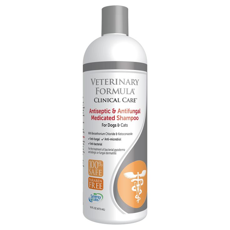 Veterinary Formula Antiseptic & Antifungal Medicated Shampoo for Dogs and Cats - 16 fl oz, Black