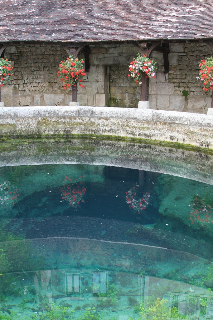 Reflets dans la Fosse Dionne à Tonnerre - Yonne Bourgogne - France