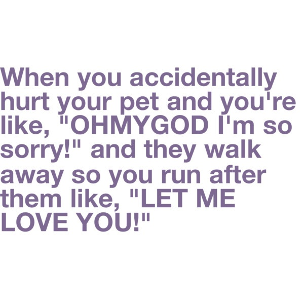 I didn't mean to hurt you!Time, Dogs, Laugh, Quotes, Pets, Funny, So True, True Stories, Animal