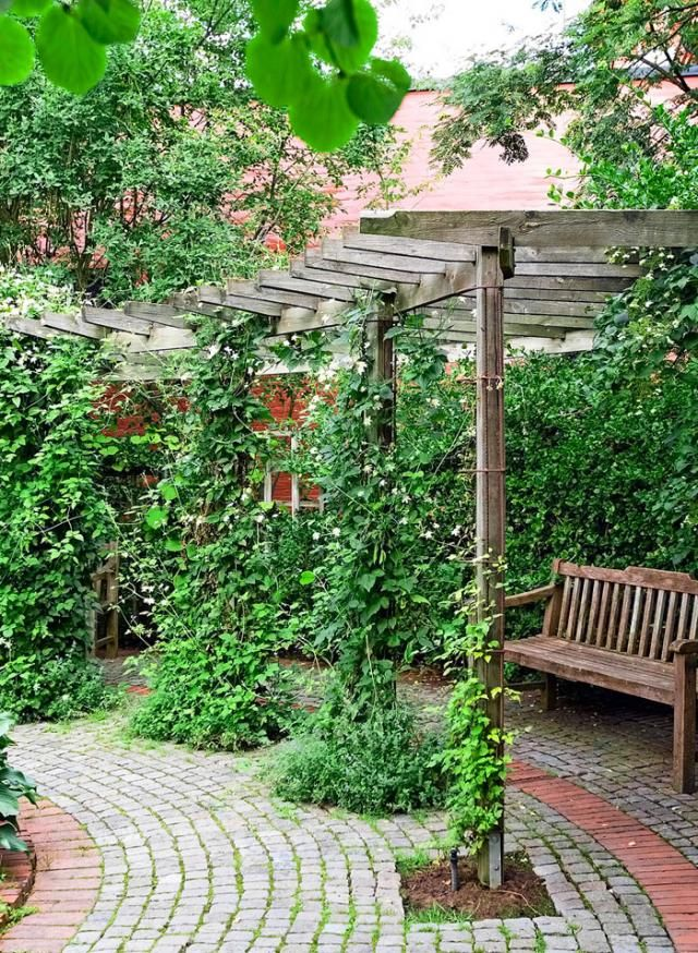Kauniisti taipuva pergolakäytävä johdattaa kulkijan puutarhan tilasta toiseen tyylikästä nupu- ja noppakiveystä pitkin. Pergolan pylväitä verhoamaan sopivia monivuotisia köynnöksiä ovat esimerkiksi kelasköynnös, viiniköynnökset ja kärhöt.