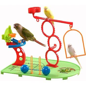Your littler Parrot can enjoy a birdie workout with this Birdie Basketball Gym - Activity Centre for Smaller Parrots