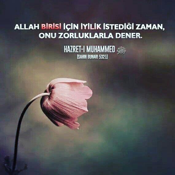 Allah birisi için iyilik istediği zaman, onu zorluklarla dener.  [Hazret-i Muhammed sallallahu aleyhi ve sellem , sahih buhari 532]  #iyilik #zaman #kötülük #imtihan #zor #kolay #deneme #islam #müslüman #türkiye #arkadaş #ilmisuffa