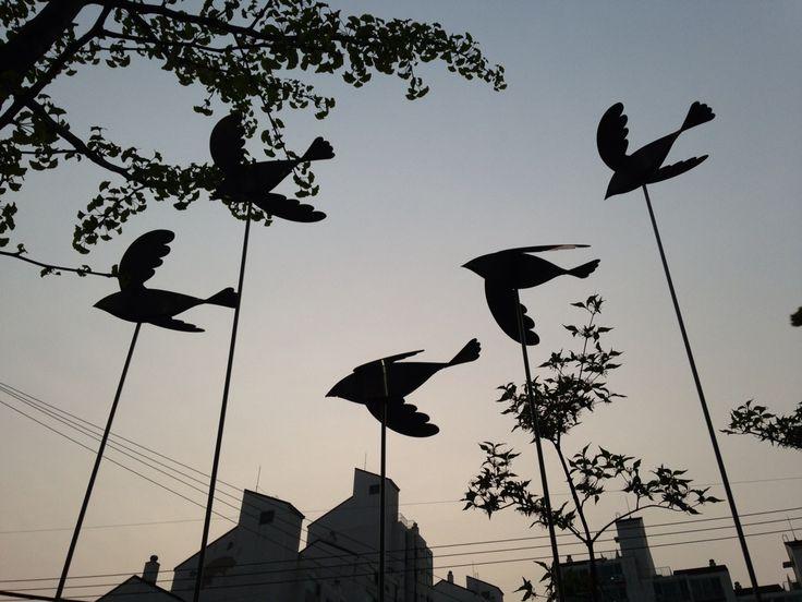 bird object