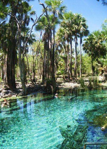 Mataranka Hot Springs, Northern Territory, Australia