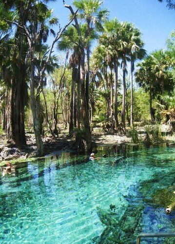Mataranka Hot Springs, Northern Territory, Australia